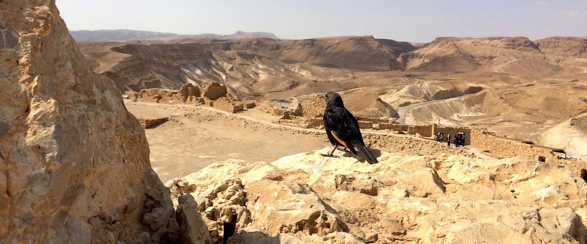 Pokoření pevnosti Masada