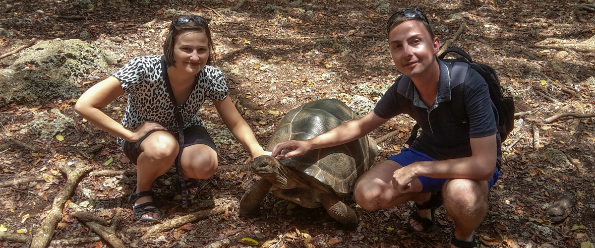 Želvy obrovské na Prison Island